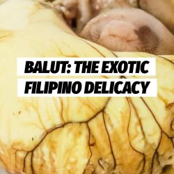 lutong-pinoy-balut-the-exotic-filipino-delicacy