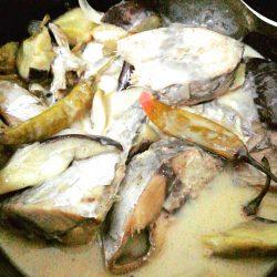 lutong-pinoy-paksiw-na-tulingan-with-gata